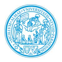 University of Parma, Italy